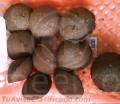 Meelko Prensa para hacer carbon en briquetas MKBC20