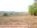 Vendo Terreno de 14 hectáreas en Cañita de Chepo, super rentable