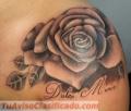 Harrys tattoo lo mejores tatuaje PROFESIONALES a buenos precios.