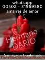 REZANDERO HECHIZERO DE AMOR 00502-31569580