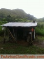 Espectacular Terreno al super precio de B/0.28 x mt2 Ola-Cocle