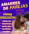 Trabajos de amor, brujo anselmo  (00502)  33427540